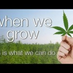 Documentary About Cannabis in the UK