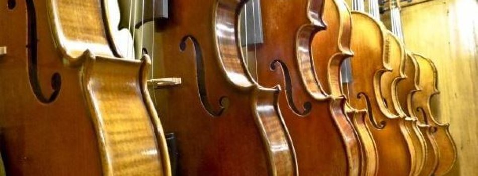 TOP 10 AMAZING REASONS WHY YOU SHOULD PLAYCELLO